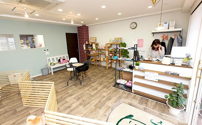 犬の美容室ドッグクローバー店内イメージ